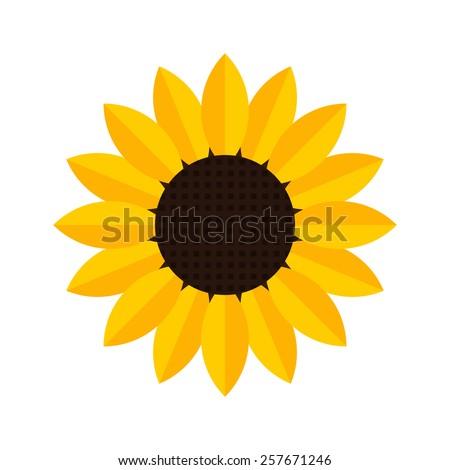 Sunflower icon - Vector  - stock vector