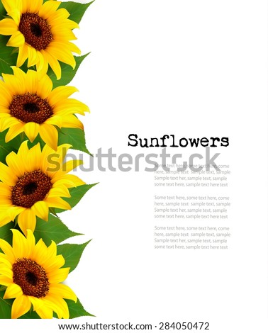 Sunflowers Background With Sunflower And Leaves. Vector - stock vector