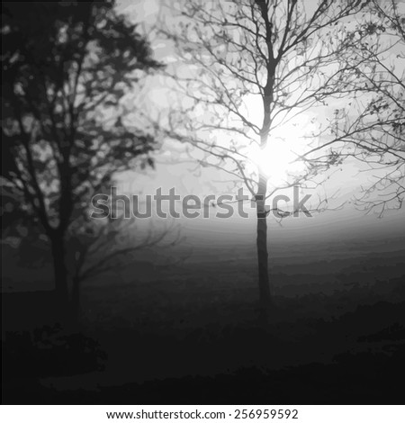 Sunrise and leafless tree. Black and white vector illustration - stock vector