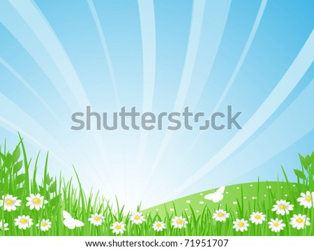 Sunrise. Green meadow, daisies and butterflies on the background of a beautiful summer landscape. Vector illustration. - stock vector