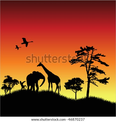 Sunset and Nature - stock vector