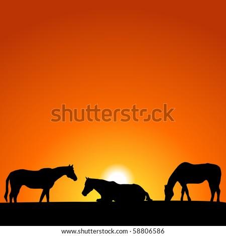 Sunset Horses Silhouette - stock vector