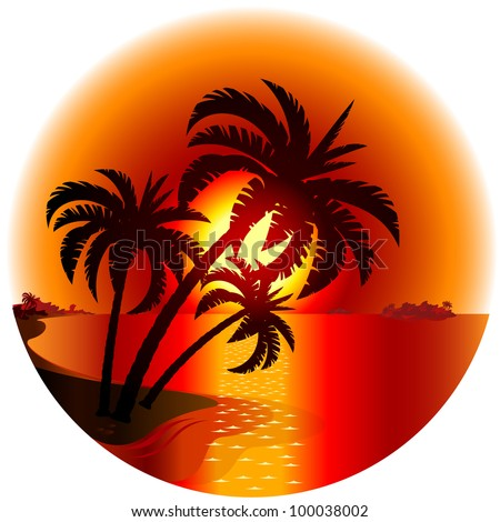 Sunset on a tropical island. Illustration on white background