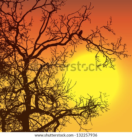 Sunset with tree and bird silhouettes - stock vector