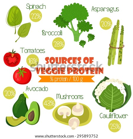 Superfoods set 2- Sources of Veggie Protein (% protein/ 100g). Tomatoes, cauliflower, broccoli, spinach, avocado,asparagus and mushrooms - stock vector