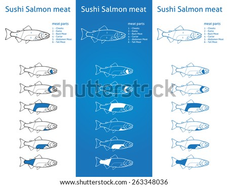 Sushi salmon meat cuts diagram in three blue versions - stock vector