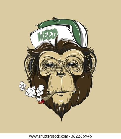 SWAG monkey in a cap or baseball cap with weed print for t-shirt. HIPSTER print. Monkey modern street style attributes. Vector art. Monkey head for poster. - stock vector