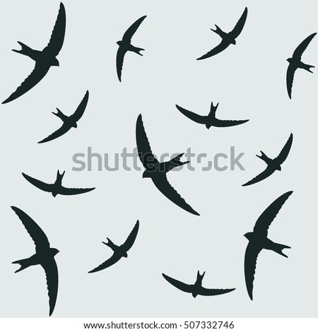 swallows image on white background,vector illustration