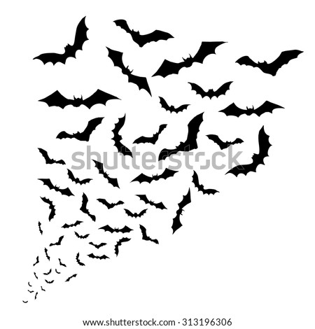 Swarm of bats on the white background. - stock vector