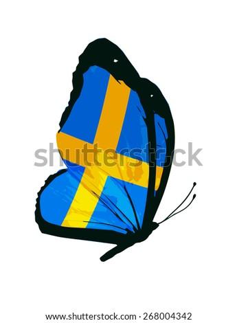 Swedish flag butterfly - vector - stock vector