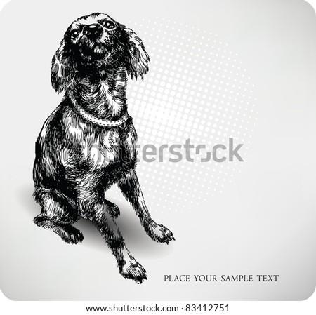 Sweet dog hand drawing vector - stock vector