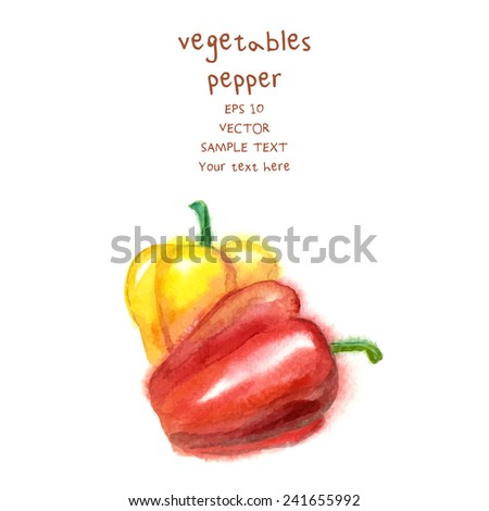 Sweet pepper. Hand drawn watercolor-style painting on white background. Vector illustration - stock vector