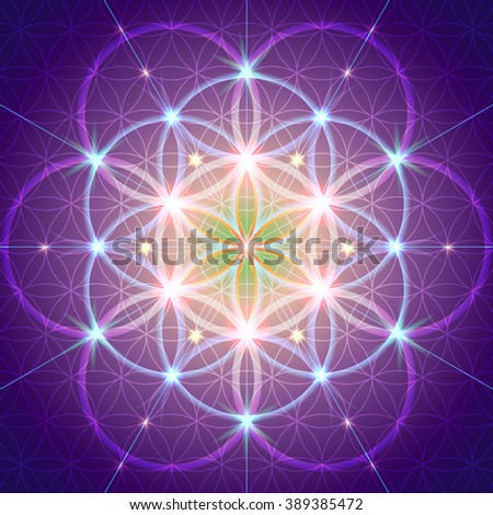 Symbols of sacred geometry, depict fundamental aspects of space and time.Flower of life symbol variations. - stock vector