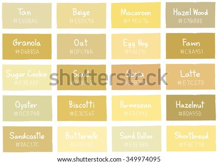 Tan Tone Color Shade Background With Code And Name Illustration