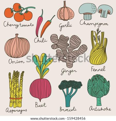 Tasty vegetables in bright set - cherry tomato, chili, garlic, champignon, onion, ginger, fennel, asparagus, beet, broccoli, artichoke. Vegetarian concept collection in cartoon style - stock vector