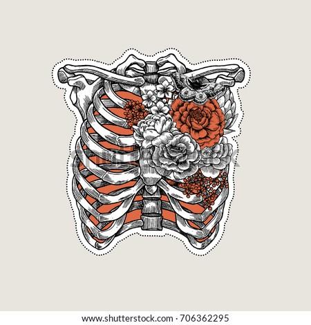 Tattoo Anatomy Vintage Illustration Roses Chest Stock-Vektorgrafik ...