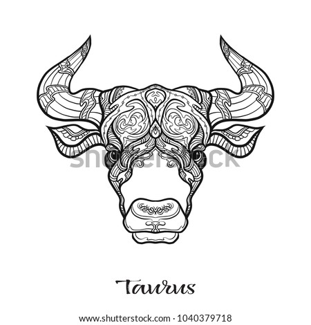 Taurus Bull Ox Zodiac Sign Astrological Horoscope Collection Outline Vector Illustration