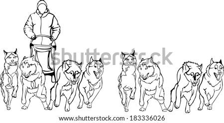 Husky Dog Stock Vectors amp Vector