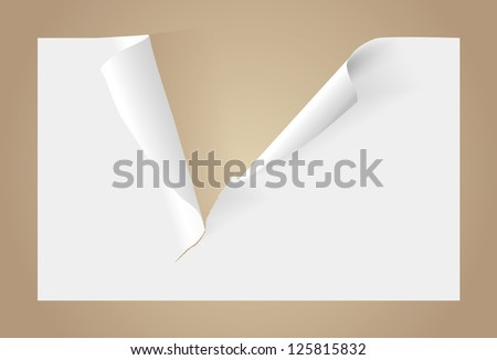Teared blank paper - stock vector