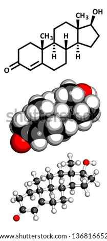 Testosterone male sex hormone, molecular model. Atoms are represented as spheres with conventional color coding: hydrogen (white), carbon (grey), oxygen (red)  - stock vector