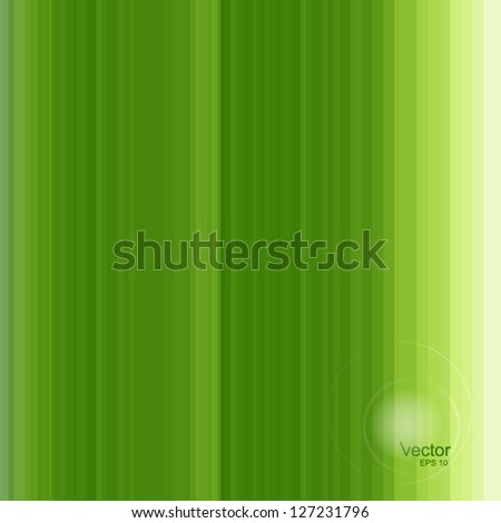 Texture of green leaf. Nature background vector - stock vector