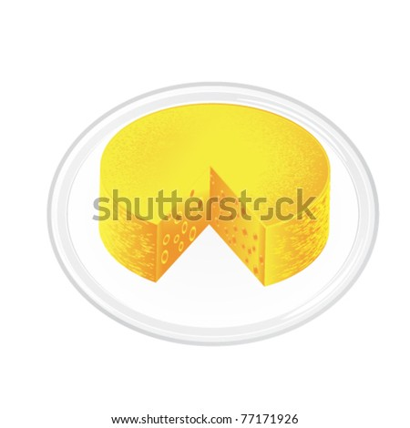 textured cheese on plate - esp 10 - stock vector