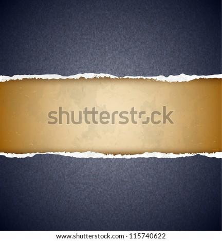 Textured torn paper - stock vector