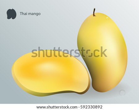 Thai Mango Vector