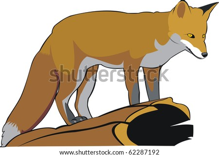 the art illustration of one red fox - stock vector