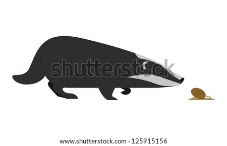 The Badger - stock vector