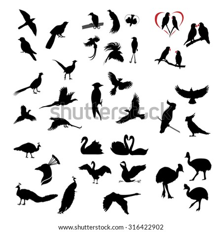 The big set of vector wild birds silhouettes and icons. Illustations of flying birds. - stock vector