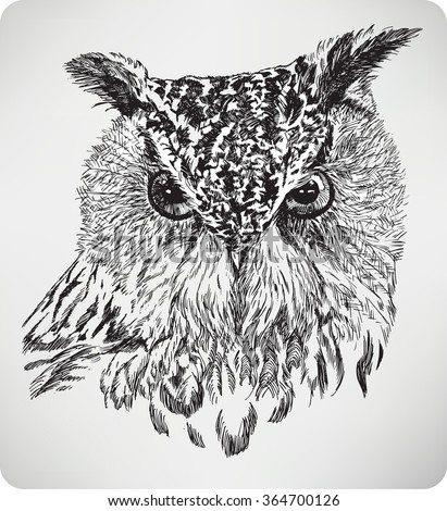 The bird's head Eagle Owl, hand drawing, vector illustration.