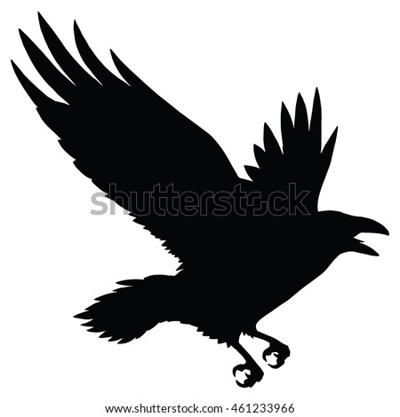 the black silhouette of a crow circuit birds flying rook raven magpie