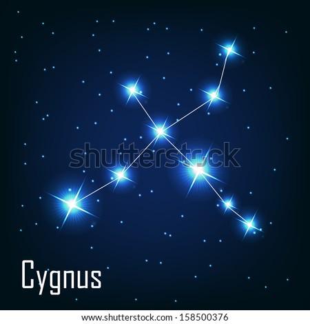 "The constellation "" Cygnus"" star in the night sky. Vector illustration - stock vector"