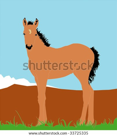 The drawn horse grazed on a grass in mountains