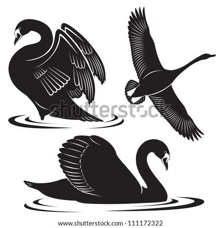 The figure shows a bird swan - stock vector