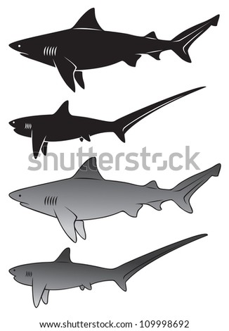 the figure shows a shark - stock vector