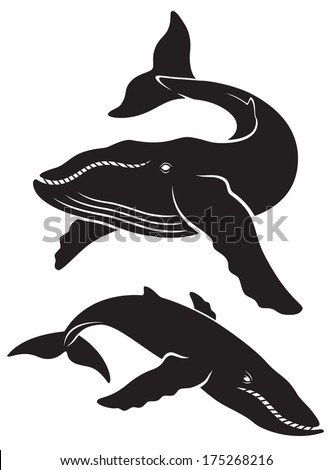 the figure shows a whale - stock vector