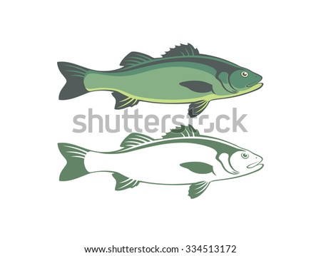 the figure shows seabass - stock vector