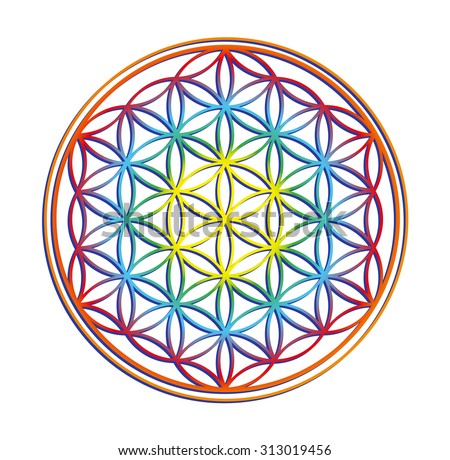 the flower of life - stock vector