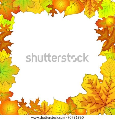 The frame of autumn leaves vector