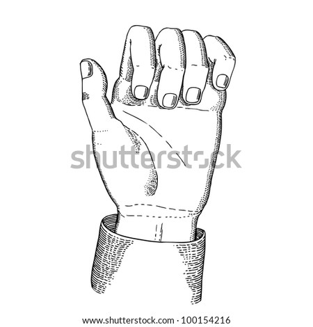 The hand holding - stock vector