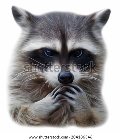 The head and hands of a cute and cuddly raccoon, Procyon lotor, that can be very dangerous beast. Human like embarrassed expression on the animal face. Amazing vector image in oil painting style. - stock vector
