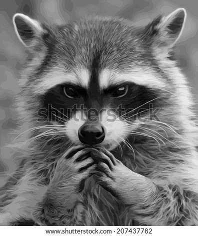 The head and hands of cute and cuddly, but shy raccoon. Side face portrait of the excellent representative of the wildlife. Amazing gray scaled vector image. Great for user pic, icon, label or tattoo. - stock vector