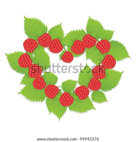 The heart of raspberry and raspberry leaf - stock vector