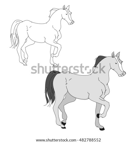 The horse goes trotting outline drawing gray pony on a white background, vector illustration