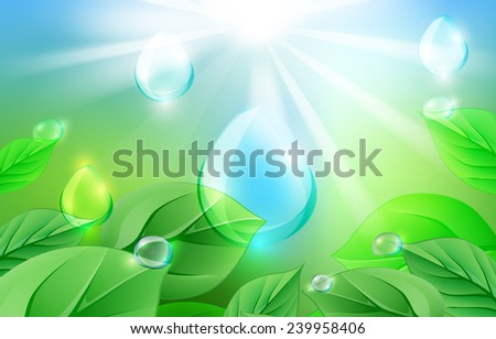 The illustration of green leaves and water drops. Vector image - stock vector
