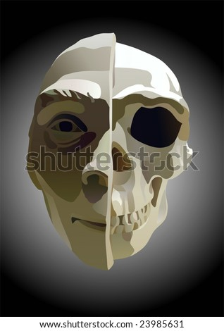 the illustration of human head with part of skull - stock vector