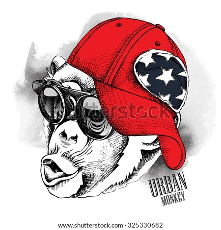 The image monkey portrait in the cap and glasses. Vector illustration. - stock vector