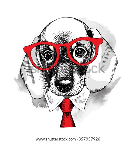 The image with the portrait of the dog Dachshund in the glasses and with the tie. Vector illustration. - stock vector